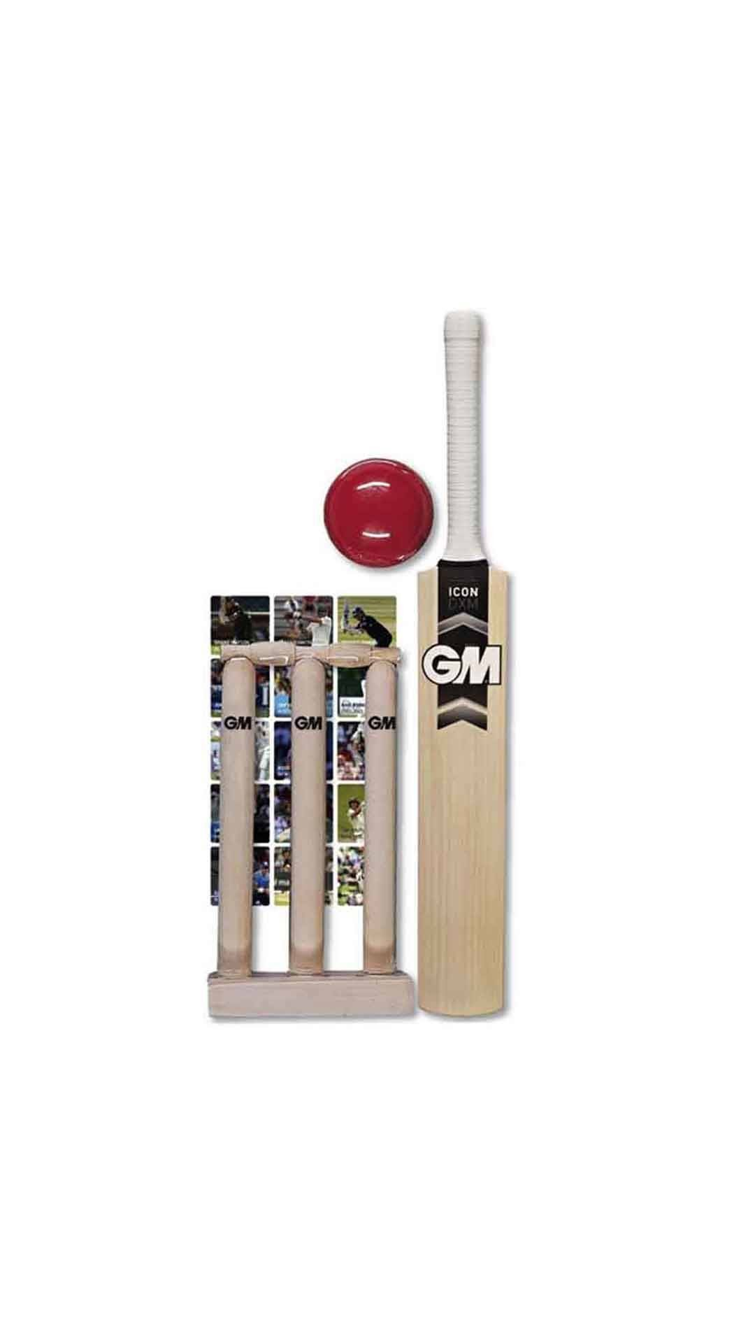 GM Mini Cricket Set