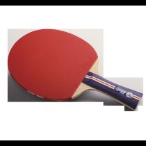 DHS R1002 Table Tennis Bat