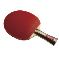 DHS R3002 Table Tennis Bat