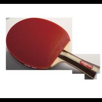 DHS R3002 Table Tennis Bat