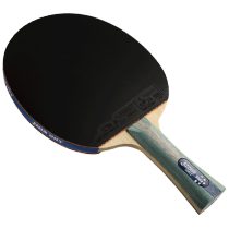 DHS  R5002 Table Tennis Bat