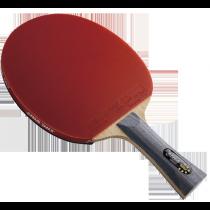 DHS R6002 Table Tennis Bat