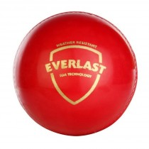 SG Everlast Cricket Ball