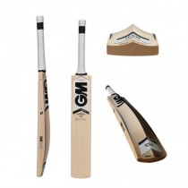 GM Icon 202 Kashmir Willow Cricket Bat