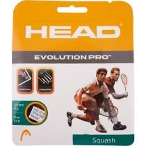 Head Evolution Pro Squash String 17 L