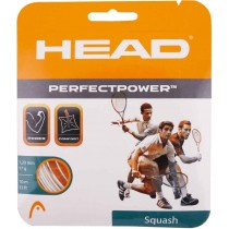 Head Perfect Power Squash String