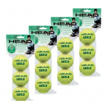 Head TIP lll  Tennis Ball (Dozen)
