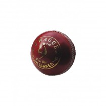 SM Swagger Cricket Leather Ball