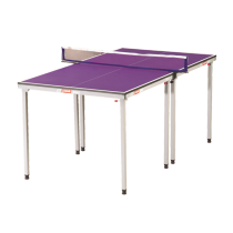 DHS Mini Table Tennis Table