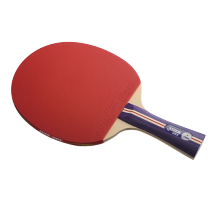 DHS R1002 Table Tennis Bat