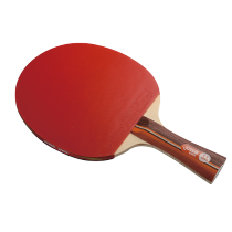 DHS R2002 Table Tennis Bat