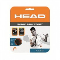 Head Evolution Pro Squash String 16 L